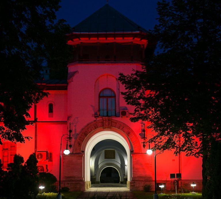 Ziua Mondială a Conștientizării Bolii Duchenne:  Palatul Cotroceni va fi iluminat în roșu